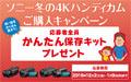 ソニー冬の4Kハンディカムご購入キャンペーン