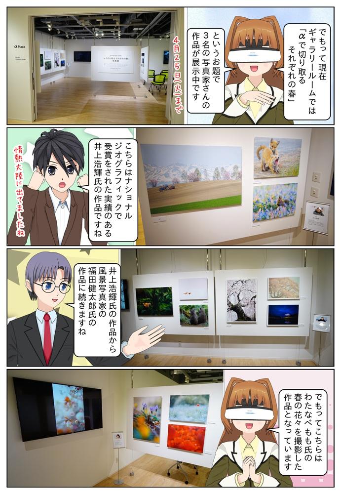 ギャラリーでは現在「αで切り取る それぞれの春」というお題で、写真家 井上浩輝氏、福田健太郎氏、わたなべもも氏の作品が展示されています。