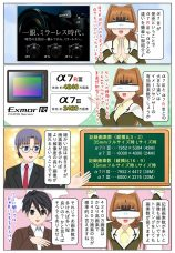 『α7III』ILCE-7M3 と『α7R III』ILCE-7RM3 や『α9』ILCE-9との違いを簡単に御紹介