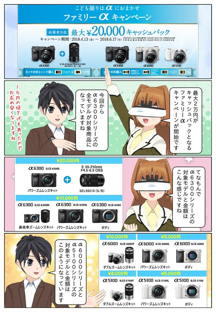 ソニー ファミリーαキャンペーンにより対象のデジタル一眼カメラを御購入していただいたお客様の応募者全員に最大2万円のキャッシュバックを致します。