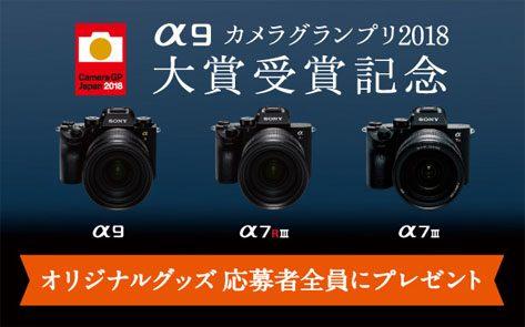 デジタル一眼カメラ α Eマウント