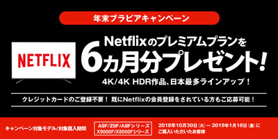 Netflixのプレミアムプランを6ヵ月分プレゼントキャンペーン