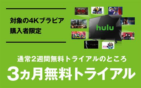 ソニー 4Kテレビ BRAVIA購入者限定 hulu 3ヶ月無料トライアル