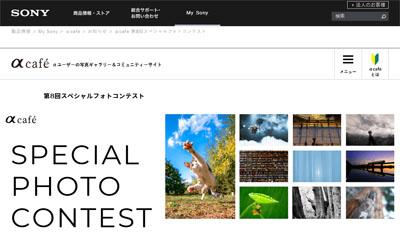 αcafe 第8回スペシャルフォトコンテスト