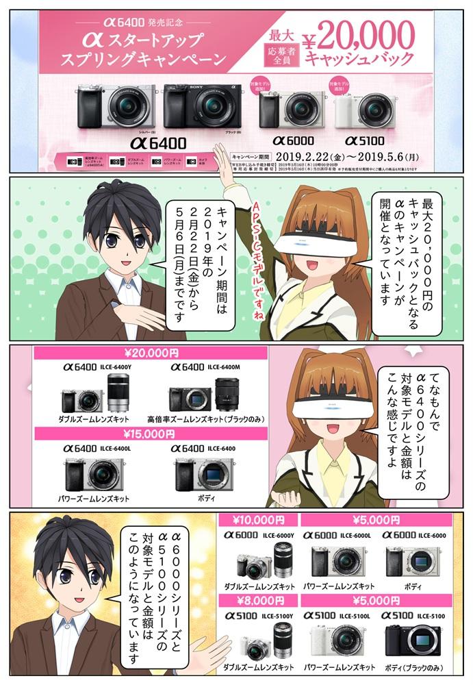 ソニー αスタートアップ キャンペーンにより対象のデジタル一眼カメラを御購入していただいたお客様の応募者全員に最大2万円のキャッシュバックとなります。