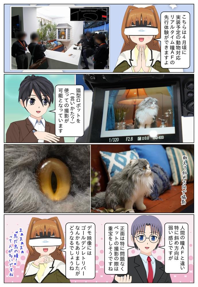 ソニーの動物対応瞳AFの体験コーナーでは、動く猫の人形を対象に動物瞳AFの体験が可能です。