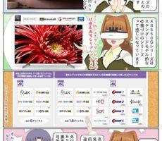 scs-uda_manga_sony_bravia_x8550g_4k-tuner_1529_001