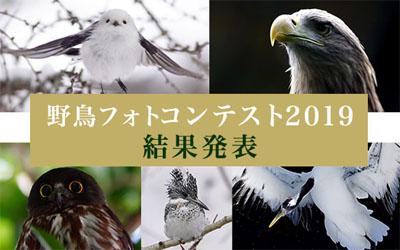 ソニー 野鳥フォトコンテスト 2019 結果発表