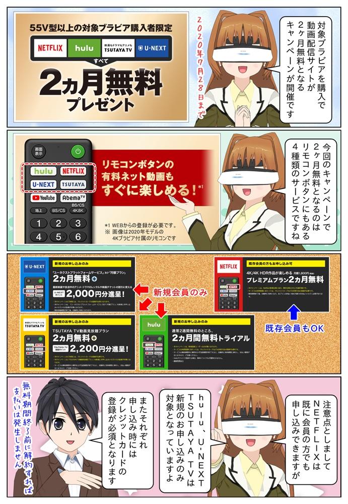 ソニーの4Kブラビアを購入でNetflix、hulu、TSUTAYA TV、U-NEXTが2ヶ月無料