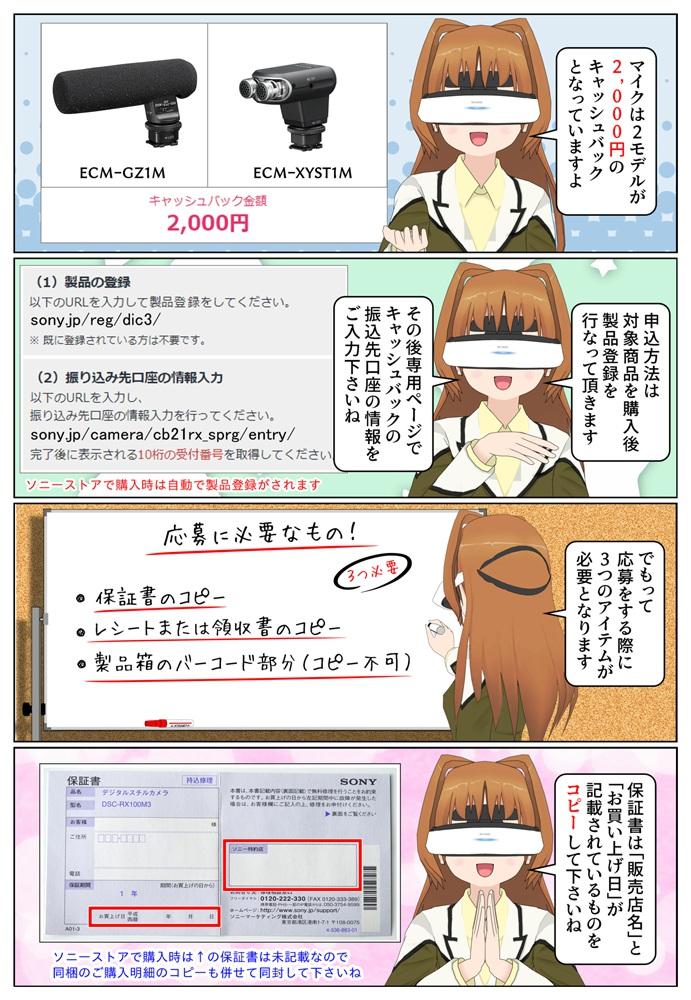 DSC-RX100M6 を購入で10,000円、DSC-RX100M5A、DSC-RX100M3を購入で5,000円のキャッシュバック