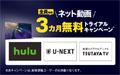 ネット動画3ヵ月無料トライアル