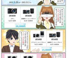 ソニー α6400シリーズかα6600シリーズを御購入で最大2万円のキャッシュバック